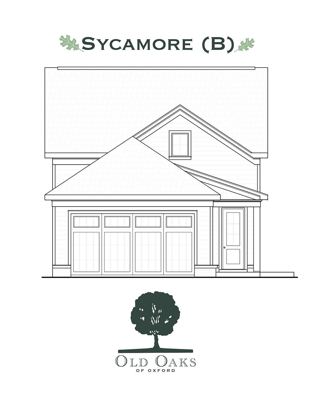 Sycamore (B)